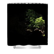 In The Paradise Shower Curtain