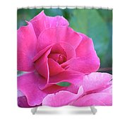 In The Pink Shower Curtain by Rona Black