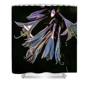 In The Shade Garden Shower Curtain