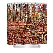 In The Shadows Of Fall 1 Shower Curtain