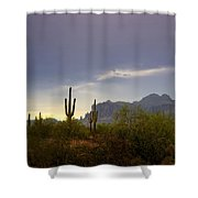In The Shadows Of The Superstitions  Shower Curtain