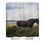 In The Tall Grass Shower Curtain