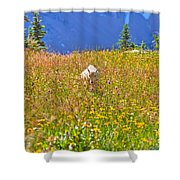 In The Thick Of It All Shower Curtain