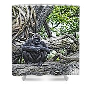 In The Treetop Shower Curtain