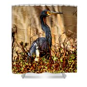 In The Water - Reflection Shower Curtain