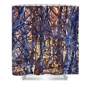 In The Woods V5 Shower Curtain
