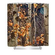 In The Woods V6 Shower Curtain