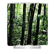 In Touch With Creation Shower Curtain