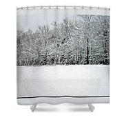 In Winter's Light Shower Curtain