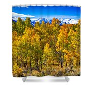 Independence Pass Autumn Colors Shower Curtain