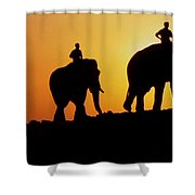India 3 Shower Curtain