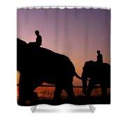 India 4 Shower Curtain
