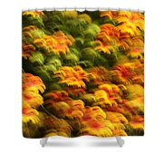 Indian Blanket Psychedelic Shower Curtain