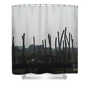 Indian Bull Cart Shower Curtain