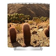 Indian Canyon Shower Curtain
