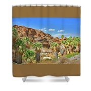 Indian Canyons View In Palm Springs Shower Curtain
