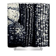 Indian Corn And Squash In Black And White Shower Curtain