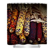 Indian Corn Shower Curtain by Elena Elisseeva