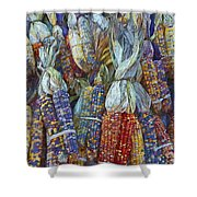 Indian Corn - Fall Colors Shower Curtain