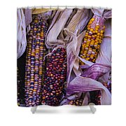 Indian Corn Harvest Shower Curtain