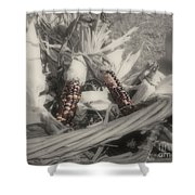 Indian Corn In Basket Partial Color Shower Curtain
