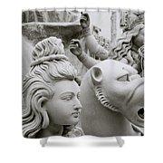 Beautiful Durga Shower Curtain