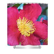 Indian Hawthorne Shower Curtain