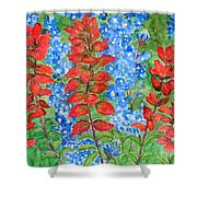 Indian Paintbrush And Bluebonnets Shower Curtain