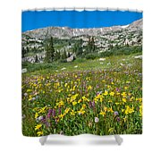 Indian Peaks Wildflower Meadow Shower Curtain