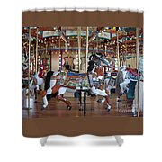 Indian Pony Shower Curtain