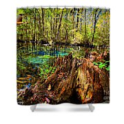 Indian Summer At Buford Spring Shower Curtain