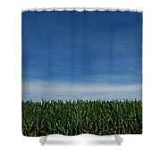 Indiana Summer Shower Curtain