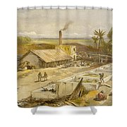 Indigo Factory - Bengal, From India Shower Curtain