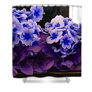 Indigo Flowers Shower Curtain