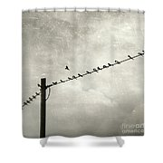 Individualist Shower Curtain