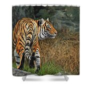 Indo-chinese Tiger Shower Curtain