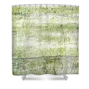 Indwell Shower Curtain