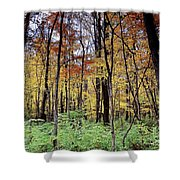 Infared Fall In Indiana Shower Curtain