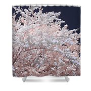 Inferred Spring Shower Curtain