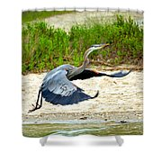 Inflight Great Blue Heron Shower Curtain