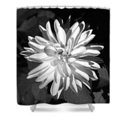 Infrared - Flower 03 Shower Curtain