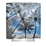 Infrared Palm Trees On The Coast Shower Curtain