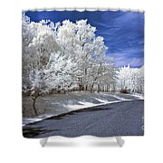 Infrared Road Shower Curtain by Anthony Sacco