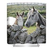 Inishmore Horses Shower Curtain