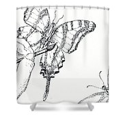 Inked Swallowtail Shower Curtain