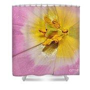 Inner Beauty Shower Curtain