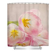 Inner Beauty - Pink Tulips Shower Curtain
