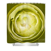 Inner Cabbage Orb Shower Curtain