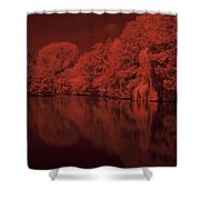 Inner City Lake Shower Curtain