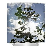 Inner Energy In Full Blossom 3 Shower Curtain